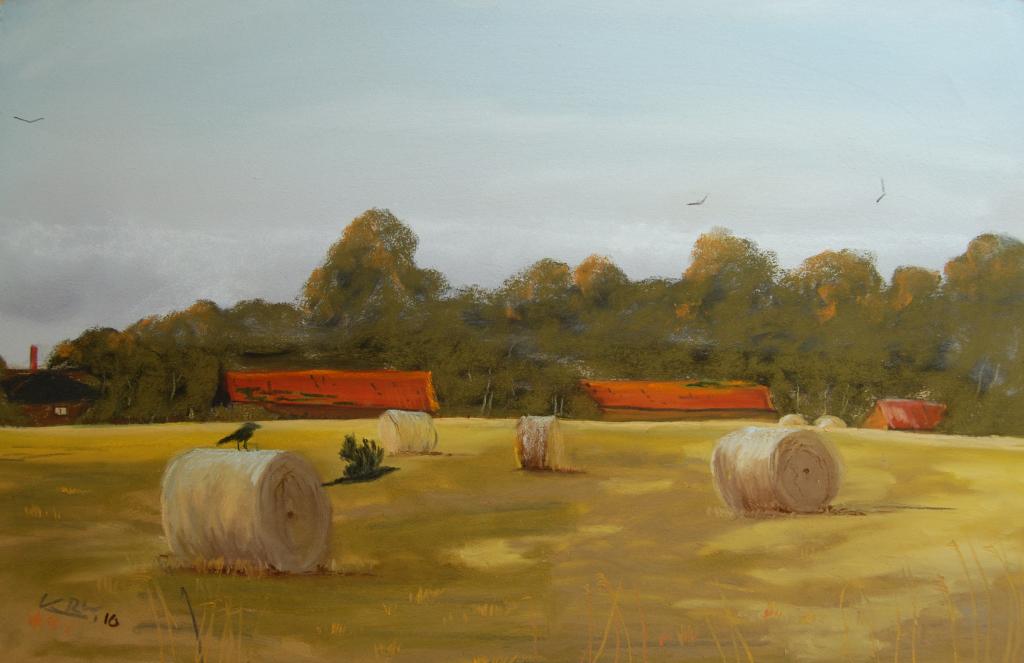 Кирон Уильямсон Straw-Bales-art-class-pastel-photograph-supplied-by-Tony-Garner-I-love-the-crows-flying-low-to-the-ground-KRW